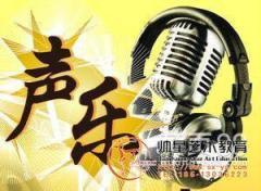 东城区和平里 声乐 流行音乐 唱歌培训招生啦